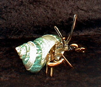 Hand Blown glass Hermit Crab w/22 kt gold accents, from Key West